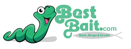 Bestbait.com
